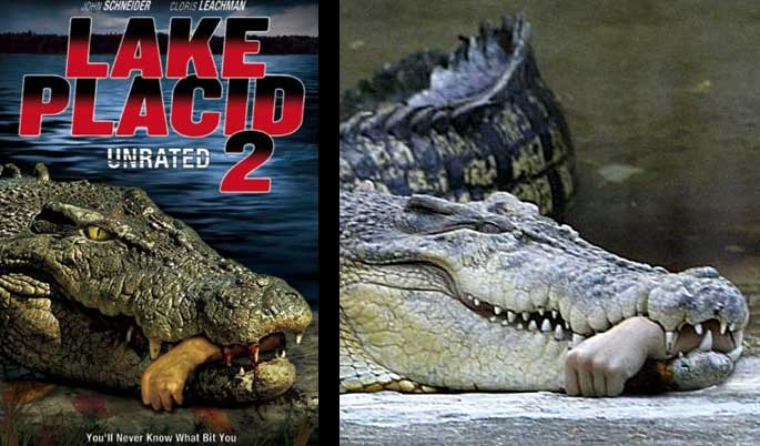 Lake Placid 2 Cover Art - Taiwanese vet's hand