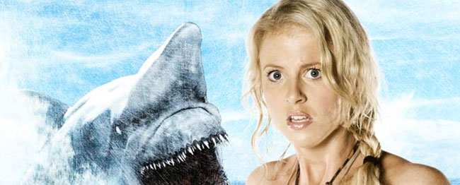 Things I Learned From Malibu Shark Attack